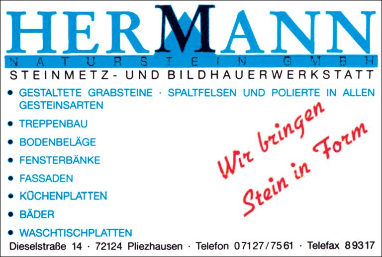 steinmetz-hermann